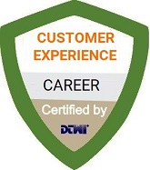customer experience career